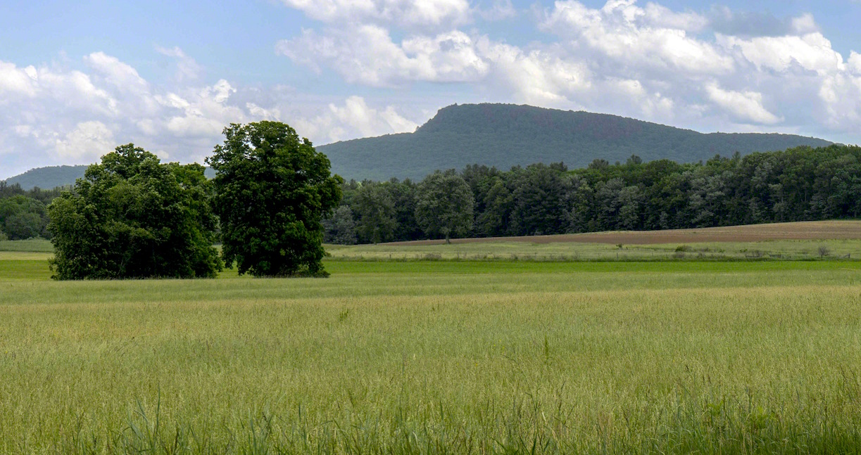 Scenic Hadley Farmland Still At Risk For Solar Array Development