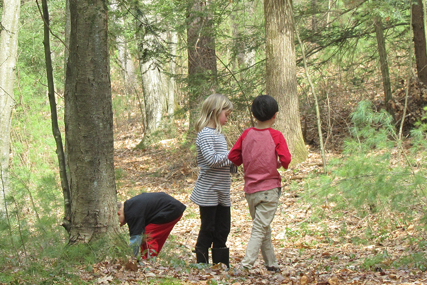 Three Kids In Woods Close Up