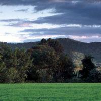 Farm fields at base of Mt Holyoke Range