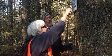 Volunteers put up sign on a tree