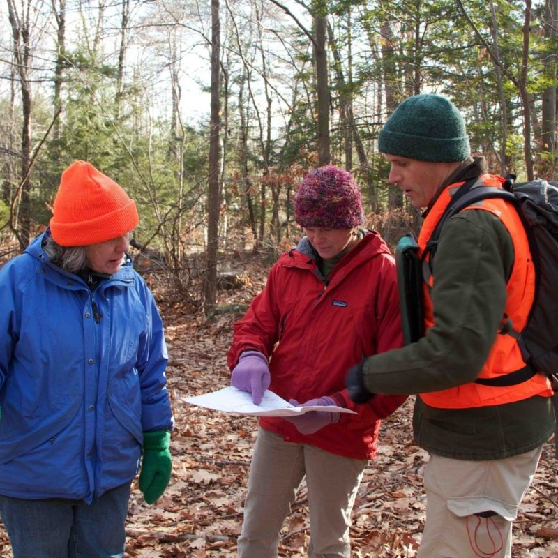 Three people reading a map in woods