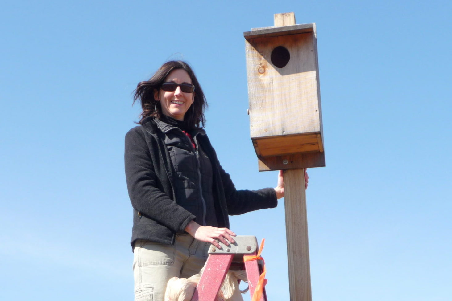 Kestrel Box Monitor