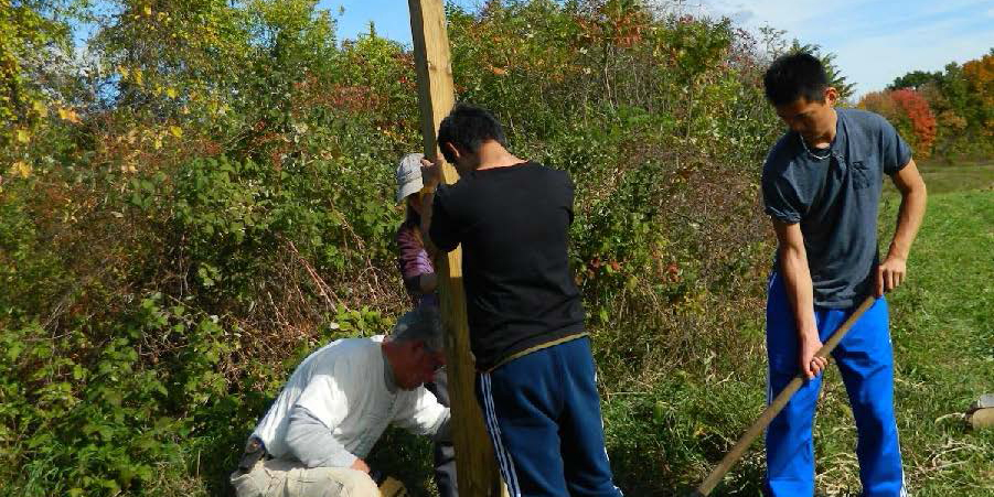 Volunteers install wood post for nest box