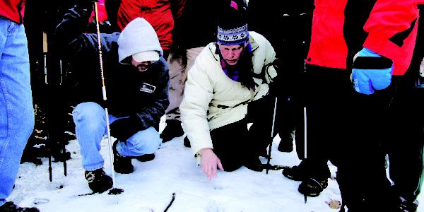 Men Kneeling To Look At Tracks In The Snow