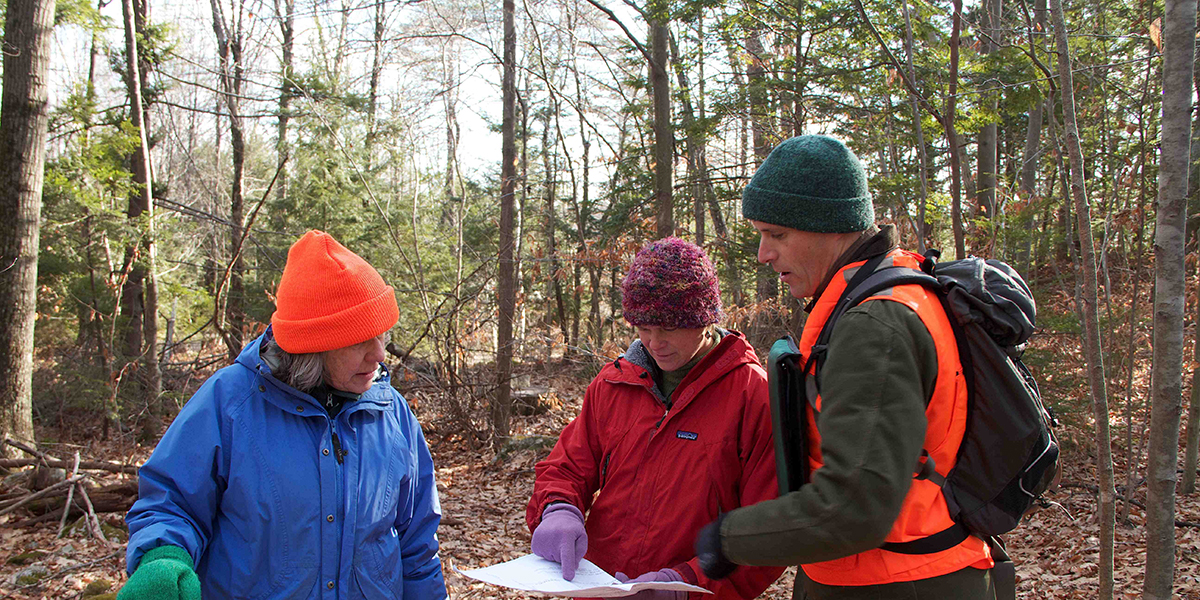 Three people reading a map in the woods