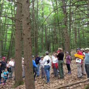 Laurie Talks About The Forest Ecology.