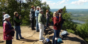 People watching hawks at Mt Holyoke