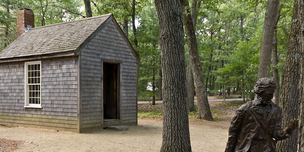 Cabin in the Woods: A Walk Back into Thoreau's Time
