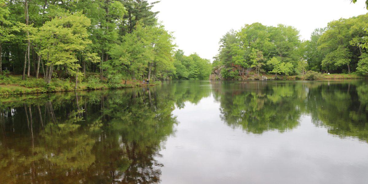 Puffer's Pond