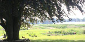 Valley Malt backyard and farmland