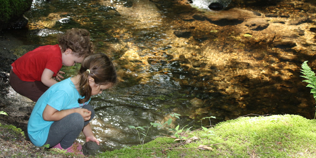 Children Playing In Brook