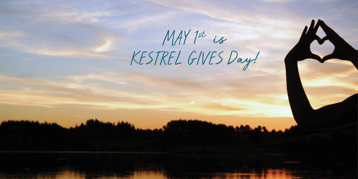 Kestrel Gives Day Sunset