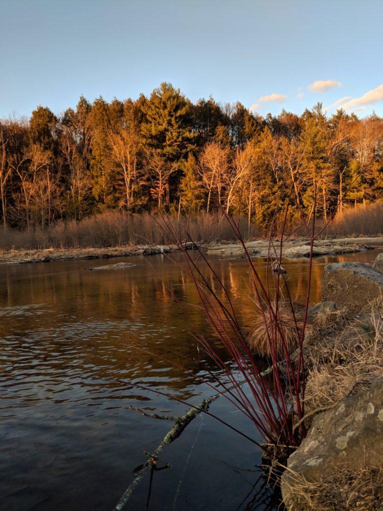 Puffer's Pond spring sunset