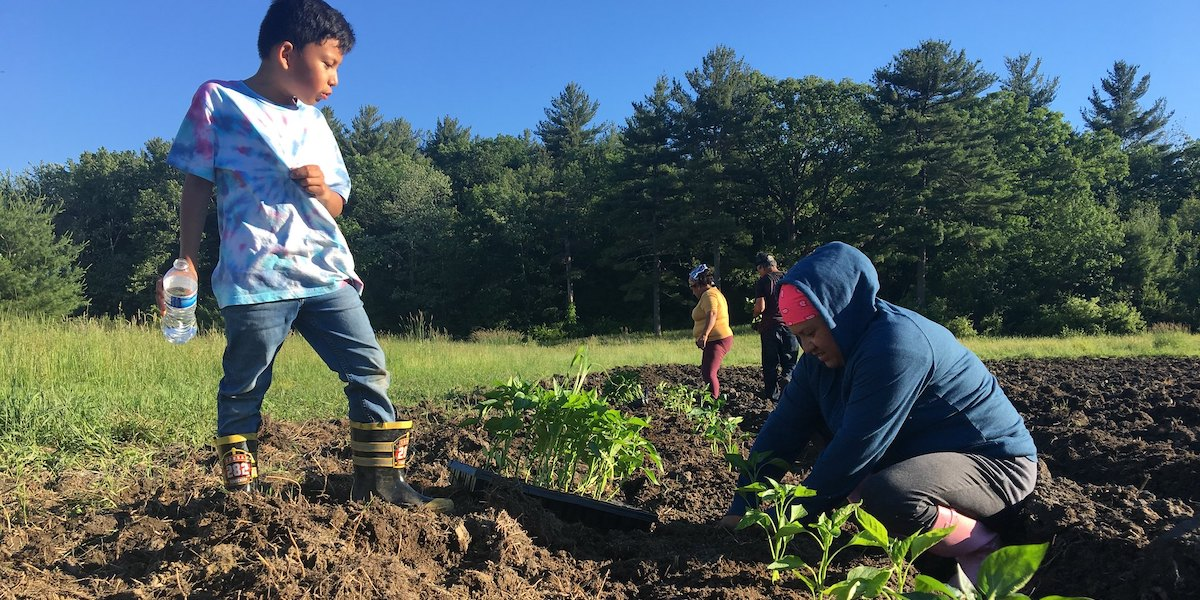 Family Planting Crops
