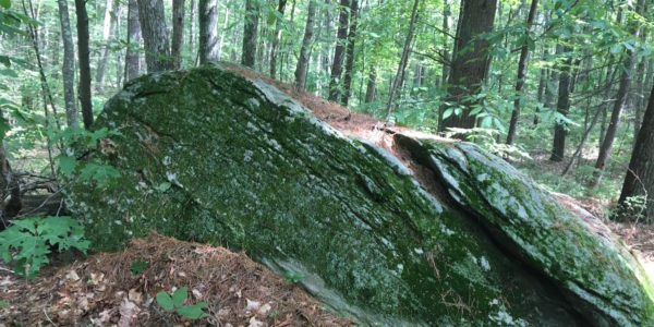 Mossy Rock Outcrop
