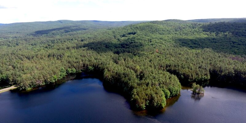 Atkins Reservoir And Forest