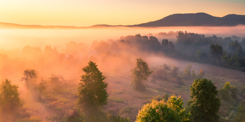 Misty Morning Over Mt Pollux_J Malcolm Brown