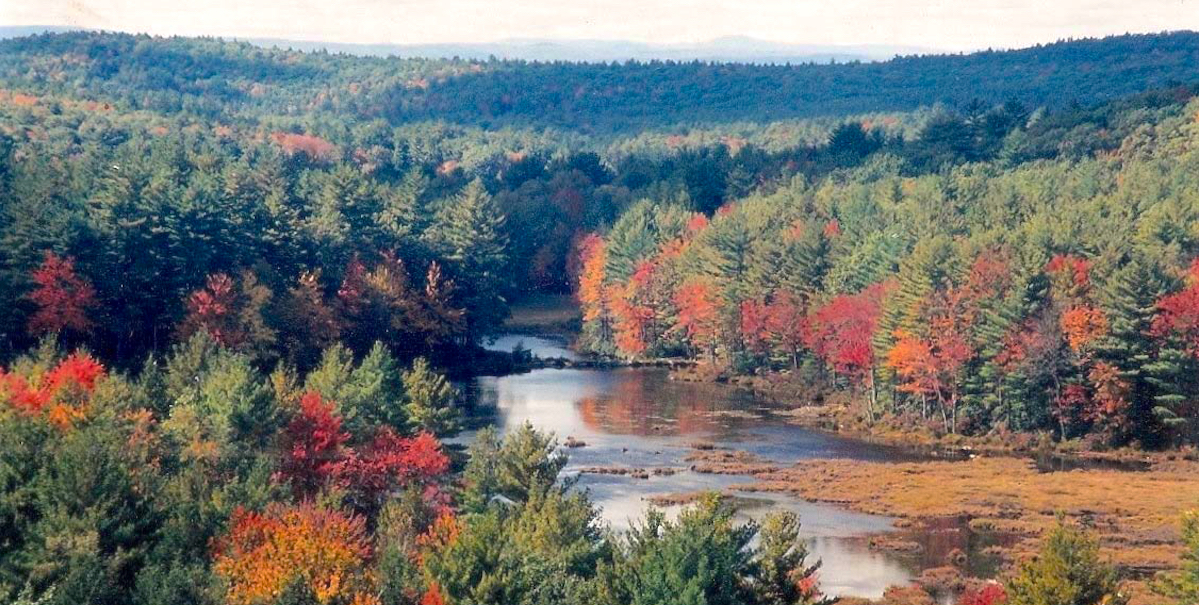 Janowitz Land And Pond In Fall